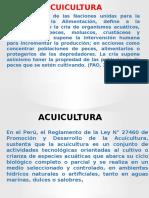 ACUICULTURA [Reparado].pptx