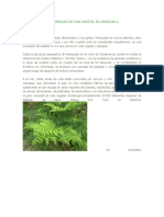 LA DIVERSIDAD DE VIDA VEGETAL EN VENEZUELA.docx