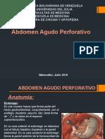 Seminario AAP.pptx
