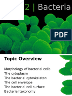 Topic+2+Bacteria_for_students