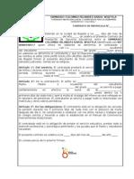 CONTRATO DE MATRÍCULA GIMNASIO COLOMBO INFANTIL/IRLANDÉS KAROL WOJTYLA