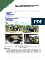 Manual Tecnico Del Cultivo Maiz Zea Mays Variedad Marginal 28 Tropical