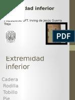 Extremidad inferior.pptx