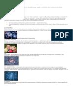 Conceptos e imágenes de biología.docx
