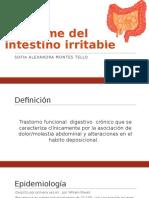 Síndrome Del Intestino Irritable