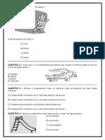 Atividades_de_Revisao_8__3_Ano.doc