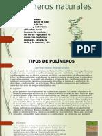 Polímeros-naturales