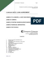 Template Convertible Loan Long Form