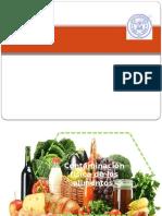 contaminación física de los alimentos