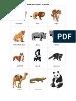 Animales Salvajes en Inglés, Clasificacion de Las Plantas q8