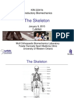 Lecture+3+Skeleton+090115