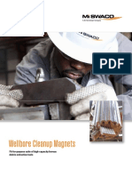 Wellbore Cleanup Magnets Brochure