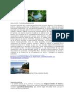 Efectos Ambientales Turismo