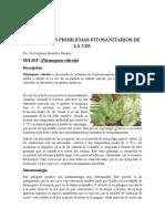 Problemas fitosanitarios de la vid