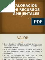 VALORACIÓN DE RECURSOS AMBIENTALES.pptx