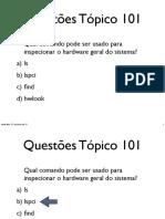 questoes101.pdf
