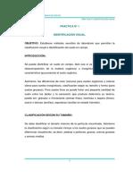 PRACTICA N-¦ 1 Identificaci+¦n Visual