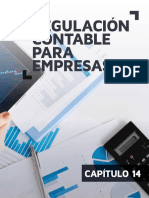 2.3. Sintesis de La Regulacion Contable Para Empresas