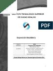 079C ProMov U2 Expo BlackBerry MorenoDaniel