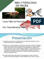 Anatomia y Fisiologia de Peces