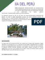 La Amazonia Dle Peru