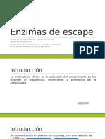 Enzimas de Escape
