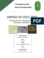AMEBAS DE VIDA LIBRE.pdf