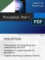 Cogni F Perception 1