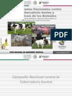 4-Campañas-Zoosanitarias