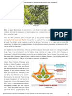 Bael tree- Bel tree-Wood...Jyotish .pdf