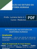 01 Introdução Anatomia