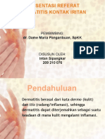 Presentation DKI.pptx