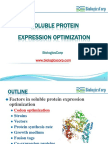 Soluble Protein Expression Optimization