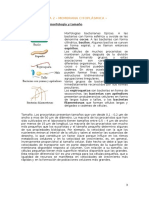 TEMA 2. Microbiología