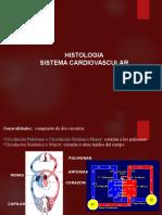 Sistema Cardiovascular is 2016