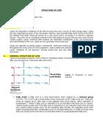 Structure of Lipid