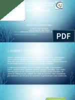 estructura organ. empresa propia.pptx
