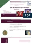 Aislamiento de hongos.pptx