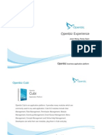 OpenBiz Experience