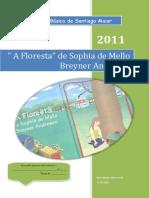 Correção Da Floresta 1