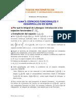 integral de lebesge y Lp muy bueno.pdf