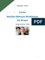 Curso No Es b Sicas Din Micas de Grupo