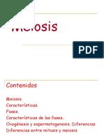 Cromosomas, Meiosis