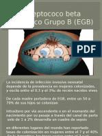 Estreptococo Beta Hemolítico Grupo B (EGB) (3)