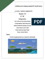 Ecologia Trabajo de Investigacion . 6-B ,Fabiola,Valeria,Wys,Lesle,Angel,Max