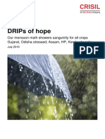 CRISIL Insight_DRIPs of hope.pdf