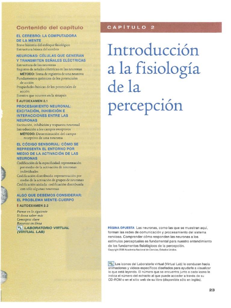 Increíble Anatomía Humana Y De Laboratorio Versión Gato Manual De La ...