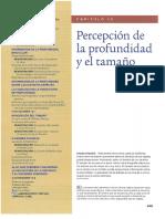 T_10_Profundidad_Tamaño_Goldstein_8_ed.pdf
