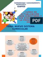 Nuevo Sistema Curricular