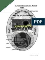 TUNEL DE PAJARES SPAÑA.docx